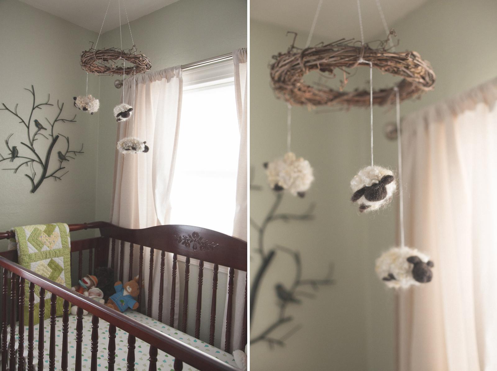 002-nursery-baby-birds-woodland-new-mexico-farmington