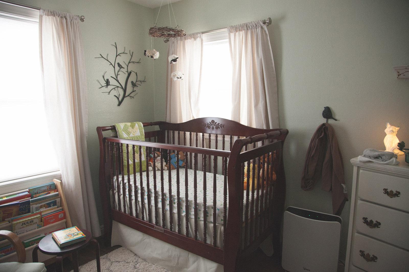003-nursery-baby-birds-woodland-new-mexico-farmington