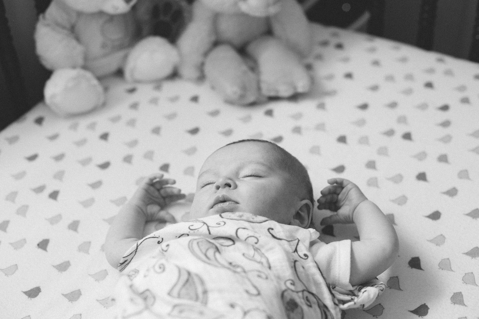 011-nursery-baby-family-birds-sleeping-woodland-new-mexico-farmington
