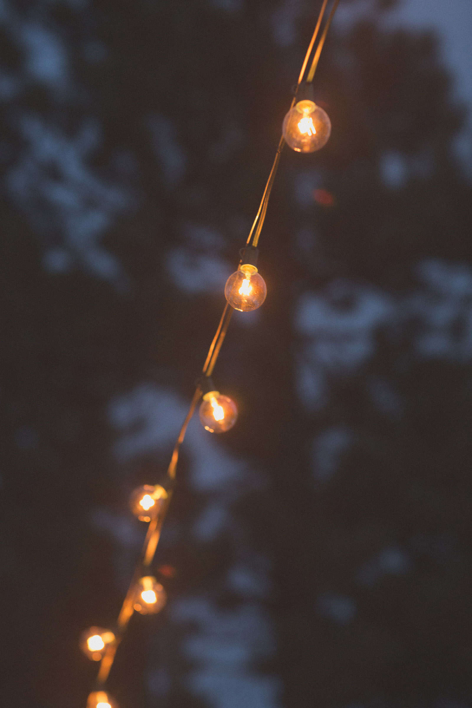 179-reception-ideas-reception-farmington-nm-co-new-mexico-colorado-mancos-ideas-string-lights-cabin-outside-natural-wedding