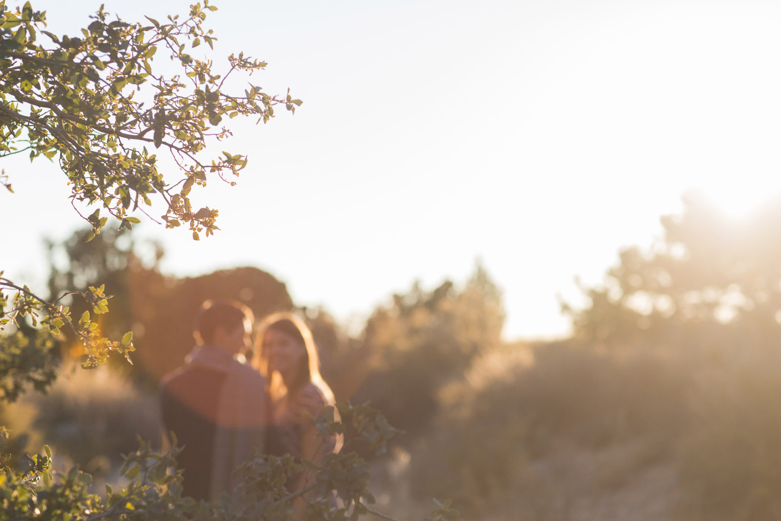 066-engagement-photographers-in-nm-farmington-and-albuquerque